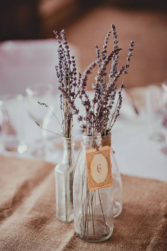 cassandra and ryan wedding4