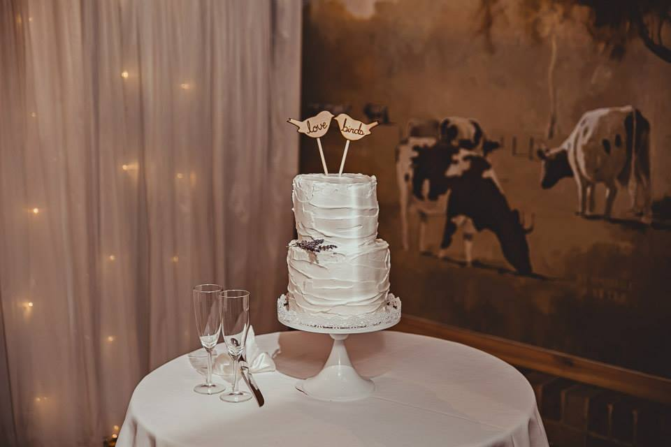 cassandra and ryan wedding5